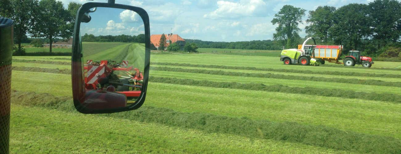 slider_oogst_grasharken.JPG